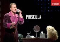 Review: Priscilla, Edinburgh Playhouse